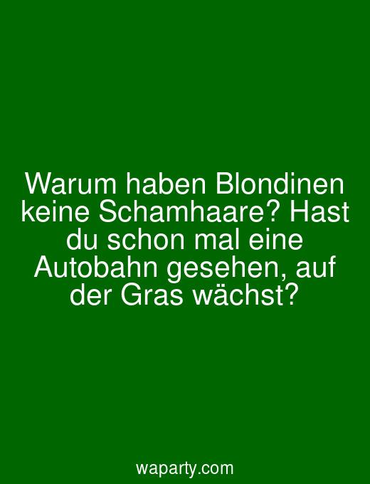 Warum haben Blondinen keine Schamhaare? Hast du schon mal eine Autobahn gesehen, auf der Gras wächst?