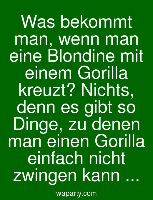 Was bekommt man, wenn man eine Blondine mit einem Gorilla kreuzt? Nichts, denn es gibt so Dinge, zu denen man einen Gorilla einfach nicht zwingen kann ...
