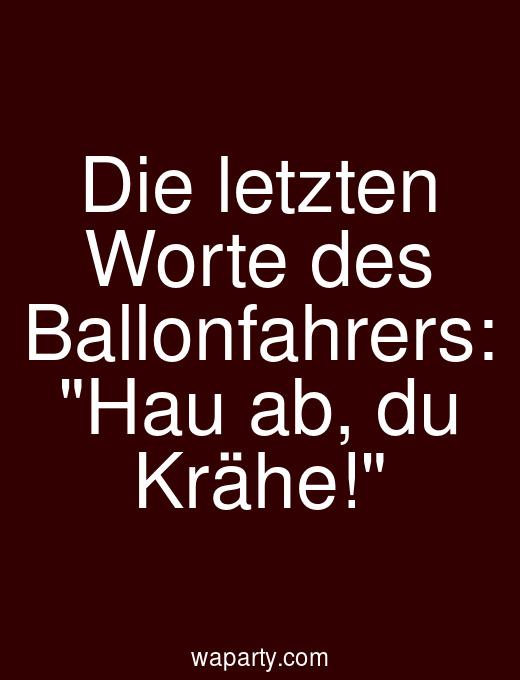 Die letzten Worte des Ballonfahrers: Hau ab, du Krähe!