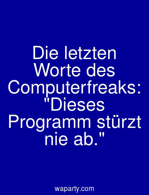 Die letzten Worte des Computerfreaks: Dieses Programm stürzt nie ab.