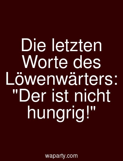 Die letzten Worte des Löwenwärters: Der ist nicht hungrig!