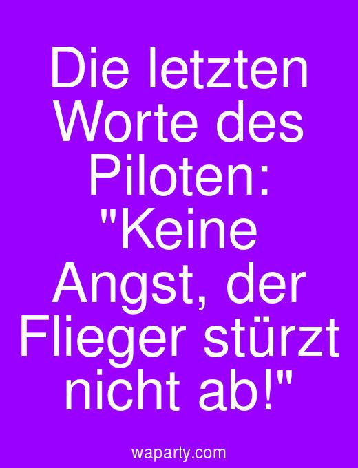 Die letzten Worte des Piloten: Keine Angst, der Flieger stürzt nicht ab!