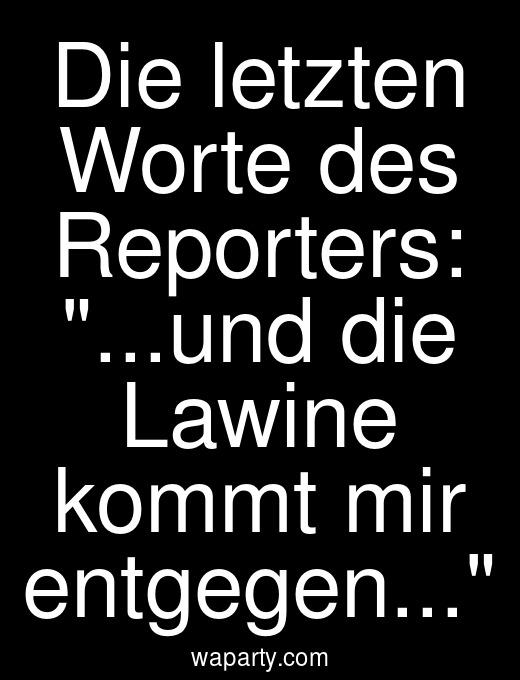 Die letzten Worte des Reporters: ...und die Lawine kommt mir entgegen...