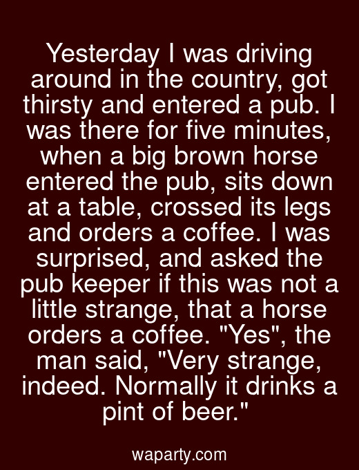 Yesterday I was driving around in the country, got thirsty and entered a pub. I was there for five minutes, when a big brown horse entered the pub, sits down at a table, crossed its legs and orders a coffee. I was surprised, and asked the pub keeper if this was not a little strange, that a horse orders a coffee. Yes, the man said, Very strange, indeed. Normally it drinks a pint of beer.