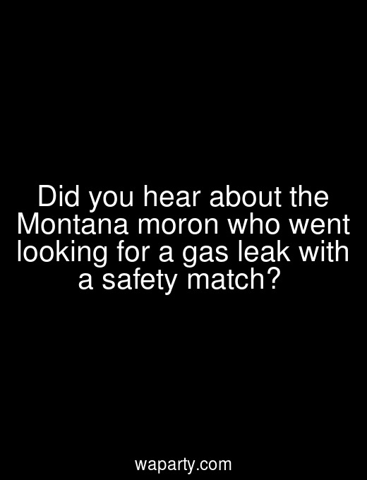 Did you hear about the Montana moron who went looking for a gas leak with a safety match?