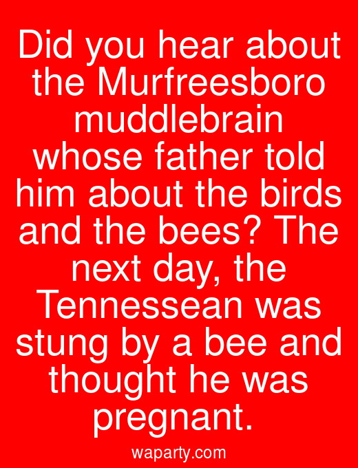 Did you hear about the Murfreesboro muddlebrain whose father told him about the birds and the bees? The next day, the Tennessean was stung by a bee and thought he was pregnant.