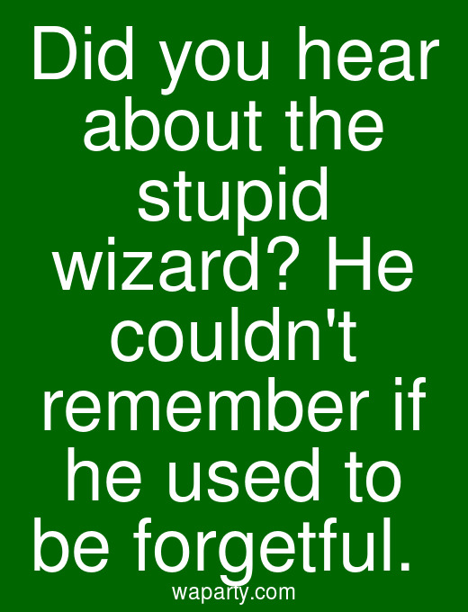 Did you hear about the stupid wizard? He couldnt remember if he used to be forgetful.