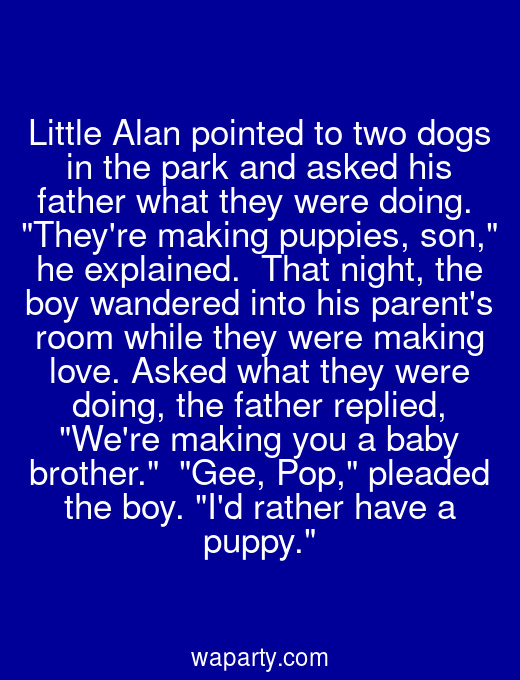 Little Alan pointed to two dogs in the park and asked his father what they were doing.  Theyre making puppies, son, he explained.  That night, the boy wandered into his parents room while they were making love. Asked what they were doing, the father replied, Were making you a baby brother.  Gee, Pop, pleaded the boy. Id rather have a puppy.