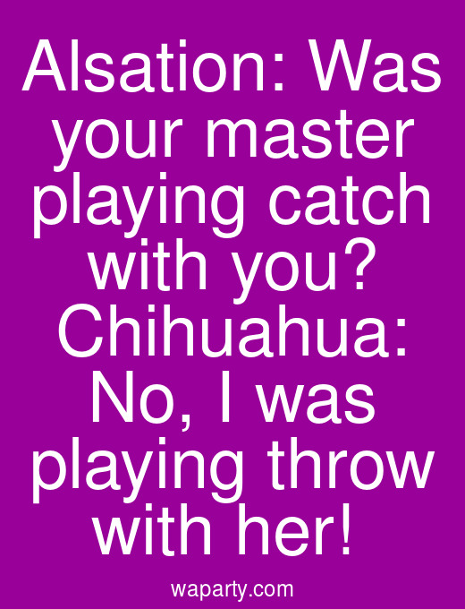 Alsation: Was your master playing catch with you? Chihuahua: No, I was playing throw with her!