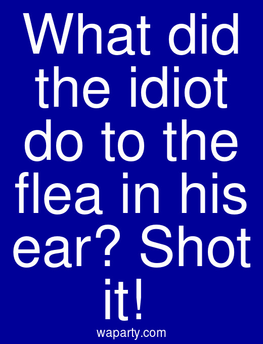 What did the idiot do to the flea in his ear? Shot it!