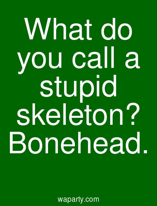 What do you call a stupid skeleton? Bonehead.