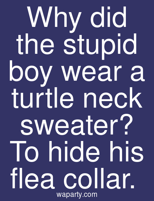 Why did the stupid boy wear a turtle neck sweater? To hide his flea collar.