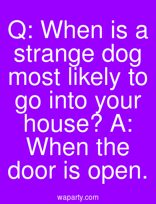 Q: When is a strange dog most likely to go into your house? A: When the door is open.