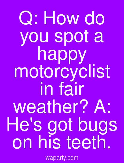 Q: How do you spot a happy motorcyclist in fair weather? A: Hes got bugs on his teeth.