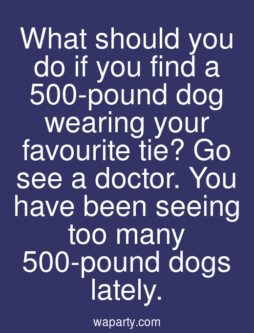 What should you do if you find a 500-pound dog wearing your favourite tie? Go see a doctor. You have been seeing too many 500-pound dogs lately.