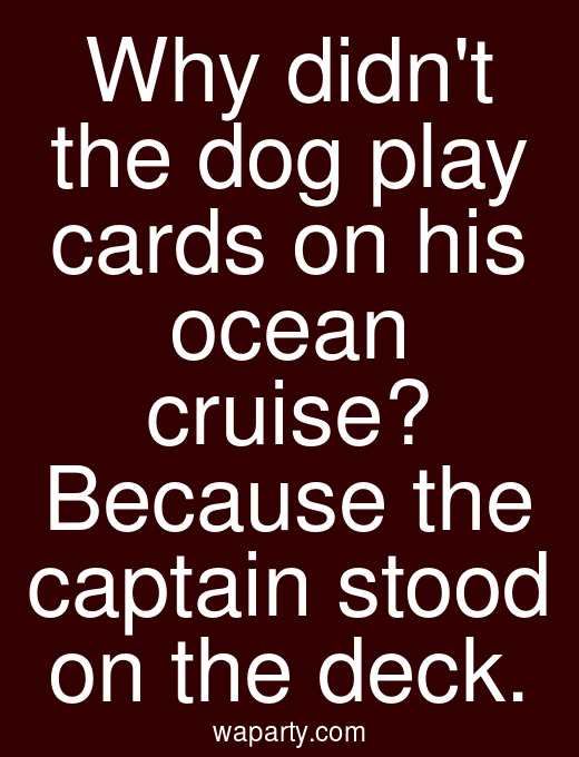 Why didnt the dog play cards on his ocean cruise? Because the captain stood on the deck.