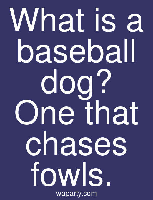 What is a baseball dog? One that chases fowls.