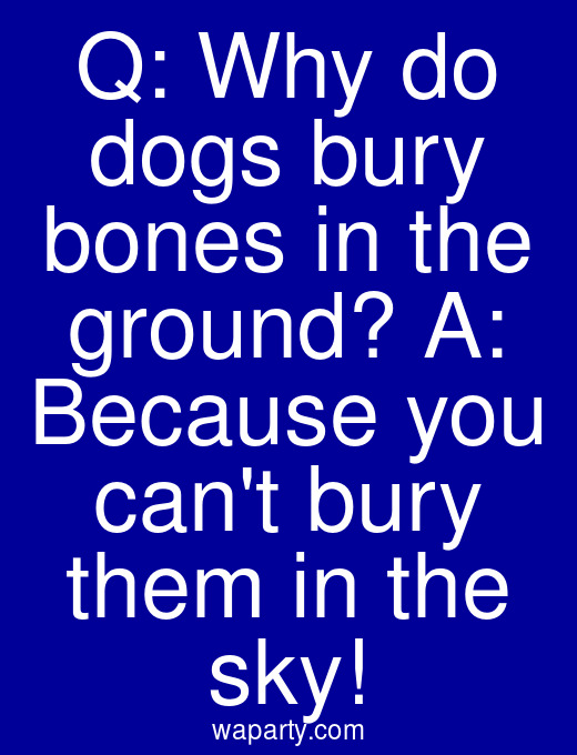 Q: Why do dogs bury bones in the ground? A: Because you cant bury them in the sky!