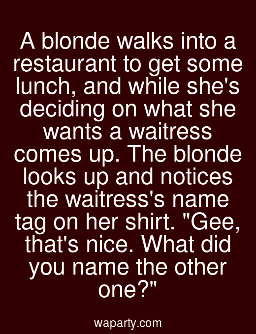A blonde walks into a restaurant to get some lunch, and while shes deciding on what she wants a waitress comes up. The blonde looks up and notices the waitresss name tag on her shirt. Gee, thats nice. What did you name the other one?