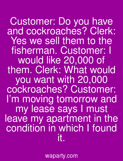 Customer: Do you have and cockroaches? Clerk: Yes we sell them to the fisherman. Customer: I would like 20,000 of them. Clerk: What would you want with 20,000 cockroaches? Customer: I'm moving tomorrow and my lease says I must leave my apartment in the condition in which I found it.