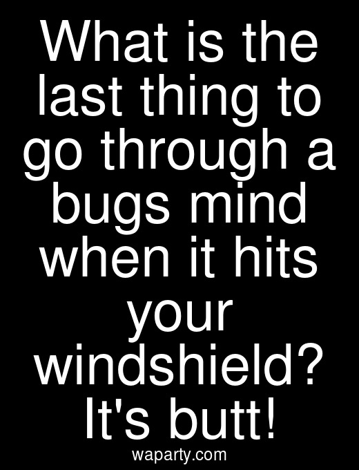 What is the last thing to go through a bugs mind when it hits your windshield? Its butt!