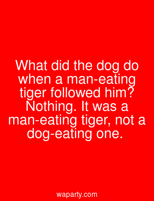 What did the dog do when a man-eating tiger followed him? Nothing. It was a man-eating tiger, not a dog-eating one.