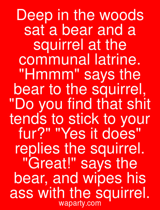 Deep in the woods sat a bear and a squirrel at the communal latrine. Hmmm says the bear to the squirrel, Do you find that shit tends to stick to your fur? Yes it does replies the squirrel. Great! says the bear, and wipes his ass with the squirrel.