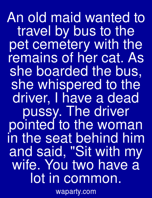 An old maid wanted to travel by bus to the pet cemetery with the remains of her cat. As she boarded the bus, she whispered to the driver, I have a dead pussy. The driver pointed to the woman in the seat behind him and said, Sit with my wife. You two have a lot in common.