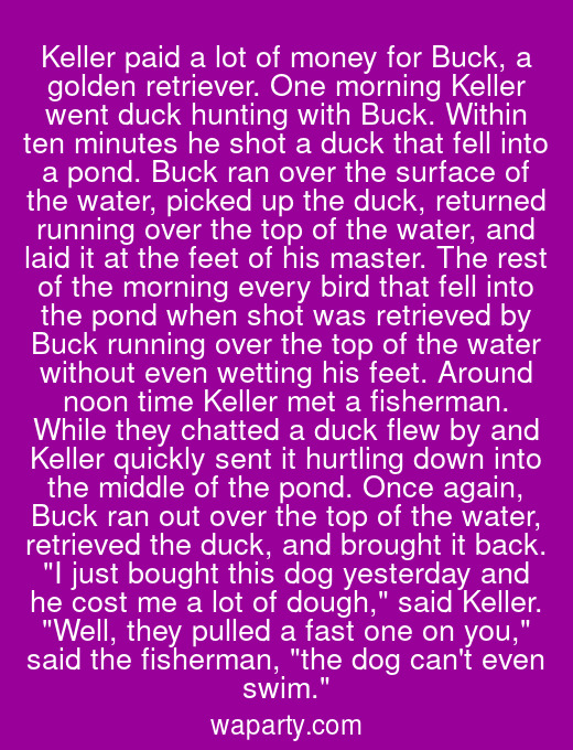 Keller paid a lot of money for Buck, a golden retriever. One morning Keller went duck hunting with Buck. Within ten minutes he shot a duck that fell into a pond. Buck ran over the surface of the water, picked up the duck, returned running over the top of the water, and laid it at the feet of his master. The rest of the morning every bird that fell into the pond when shot was retrieved by Buck running over the top of the water without even wetting his feet. Around noon time Keller met a fisherman. While they chatted a duck flew by and Keller quickly sent it hurtling down into the middle of the pond. Once again, Buck ran out over the top of the water, retrieved the duck, and brought it back. I just bought this dog yesterday and he cost me a lot of dough, said Keller. Well, they pulled a fast one on you, said the fisherman, the dog cant even swim.