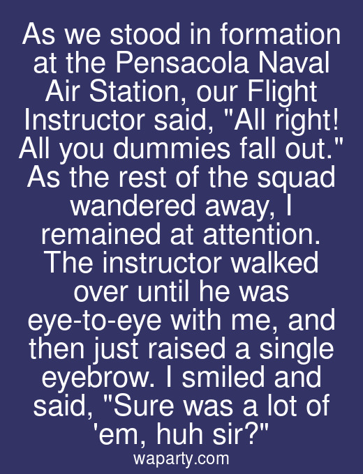 As we stood in formation at the Pensacola Naval Air Station, our Flight Instructor said, All right! All you dummies fall out. As the rest of the squad wandered away, I remained at attention. The instructor walked over until he was eye-to-eye with me, and then just raised a single eyebrow. I smiled and said, Sure was a lot of em, huh sir?
