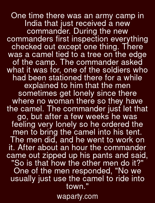 One time there was an army camp in India that just received a new commander. During the new commanders first inspection everything checked out except one thing. There was a camel tied to a tree on the edge of the camp. The commander asked what it was for, one of the soldiers who had been stationed there for a while explained to him that the men sometimes get lonely since there where no woman there so they have the camel. The commander just let that go, but after a few weeks he was feeling very lonely so he ordered the men to bring the camel into his tent. The men did, and he went to work on it. After about an hour the commander came out zipped up his pants and said, So is that how the other men do it? One of the men responded, No we usually just use the camel to ride into town.