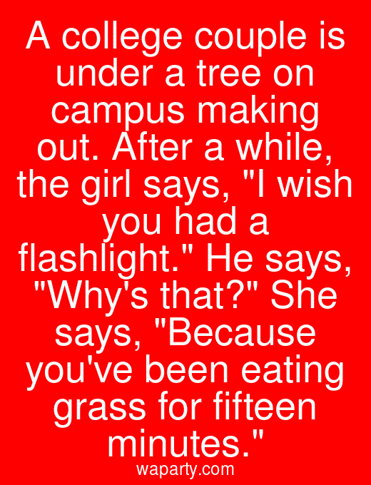 A college couple is under a tree on campus making out. After a while, the girl says, I wish you had a flashlight. He says, Whys that? She says, Because youve been eating grass for fifteen minutes.