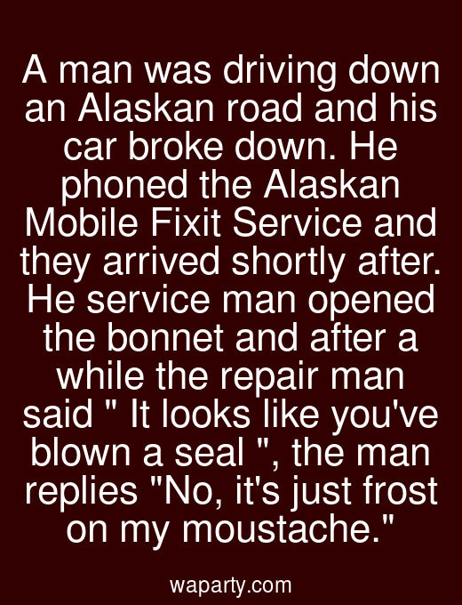 A man was driving down an Alaskan road and his car broke down. He phoned the Alaskan Mobile Fixit Service and they arrived shortly after. He service man opened the bonnet and after a while the repair man said  It looks like youve blown a seal , the man replies No, its just frost on my moustache.