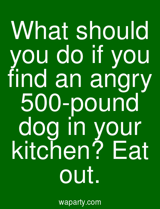 What should you do if you find an angry 500-pound dog in your kitchen? Eat out.