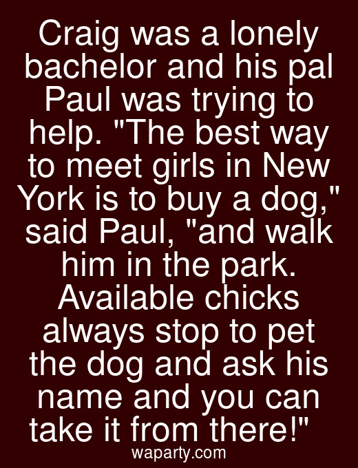 Craig was a lonely bachelor and his pal Paul was trying to help. The best way to meet girls in New York is to buy a dog, said Paul, and walk him in the park. Available chicks always stop to pet the dog and ask his name and you can take it from there!