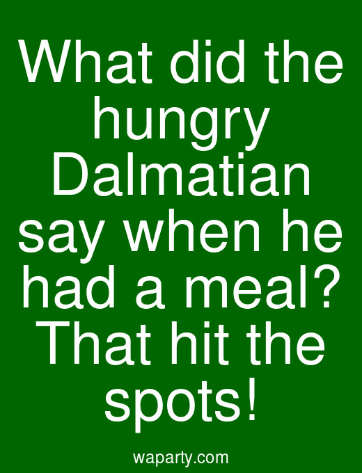 What did the hungry Dalmatian say when he had a meal? That hit the spots!