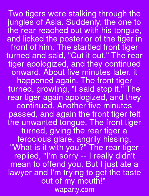 Two tigers were stalking through the jungles of Asia. Suddenly, the one to the rear reached out with his tongue, and licked the posterior of the tiger in front of him. The startled front tiger turned and said, Cut it out. The rear tiger apologized, and they continued onward. About five minutes later, it happened again. The front tiger turned, growling, I said stop it. The rear tiger again apologized, and they continued. Another five minutes passed, and again the front tiger felt the unwanted tongue. The front tiger turned, giving the rear tiger a ferocious glare, angrily hissing, What is it with you? The rear tiger replied, Im sorry -- I really didnt mean to offend you. But I just ate a lawyer and Im trying to get the taste out of my mouth!