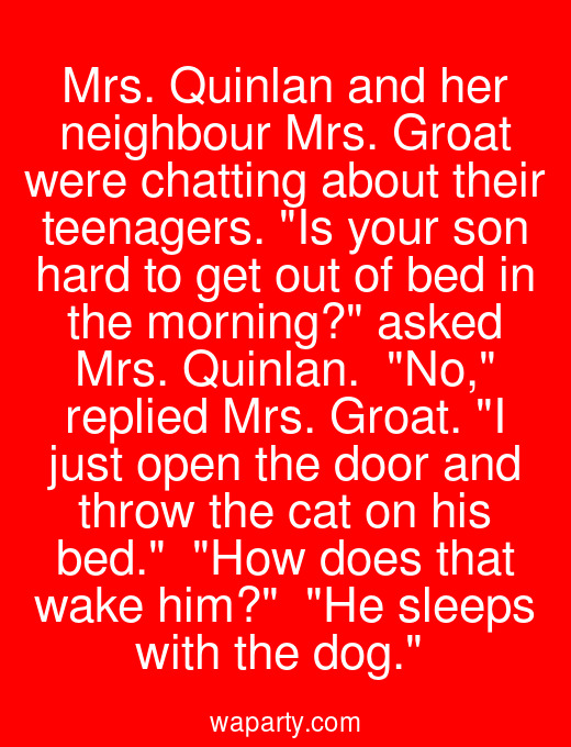 Mrs. Quinlan and her neighbour Mrs. Groat were chatting about their teenagers. Is your son hard to get out of bed in the morning? asked Mrs. Quinlan.  No, replied Mrs. Groat. I just open the door and throw the cat on his bed.  How does that wake him?  He sleeps with the dog.
