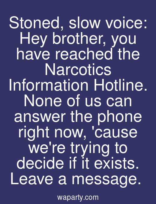 Stoned, slow voice: Hey brother, you have reached the Narcotics Information Hotline. None of us can answer the phone right now, cause were trying to decide if it exists. Leave a message.
