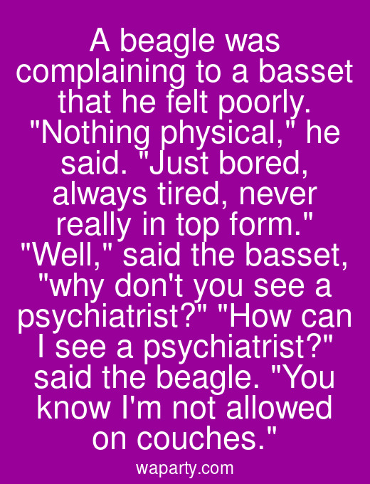A beagle was complaining to a basset that he felt poorly. Nothing physical, he said. Just bored, always tired, never really in top form. Well, said the basset, why dont you see a psychiatrist? How can I see a psychiatrist? said the beagle. You know Im not allowed on couches.