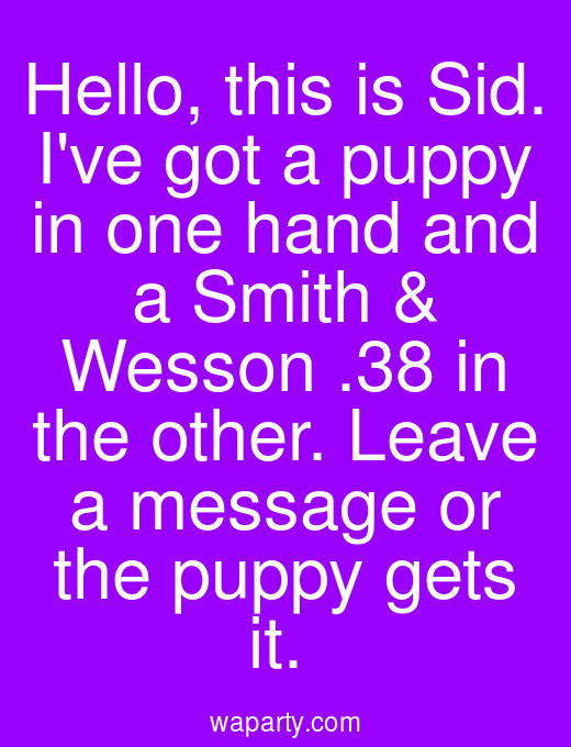 Hello, this is Sid. Ive got a puppy in one hand and a Smith & Wesson .38 in the other. Leave a message or the puppy gets it.