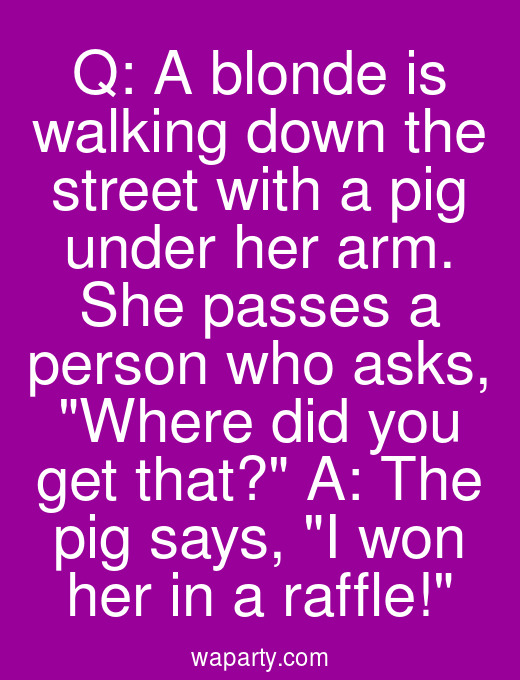 Q: A blonde is walking down the street with a pig under her arm. She passes a person who asks, Where did you get that? A: The pig says, I won her in a raffle!