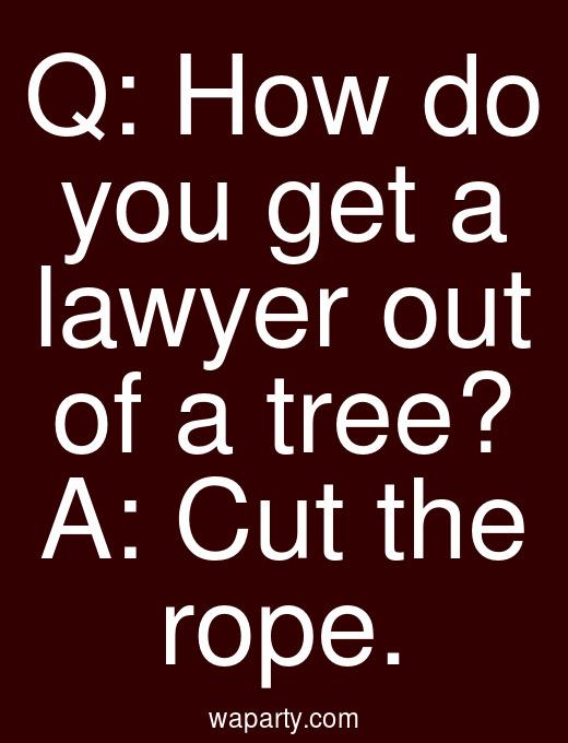 Q: How do you get a lawyer out of a tree? A: Cut the rope.