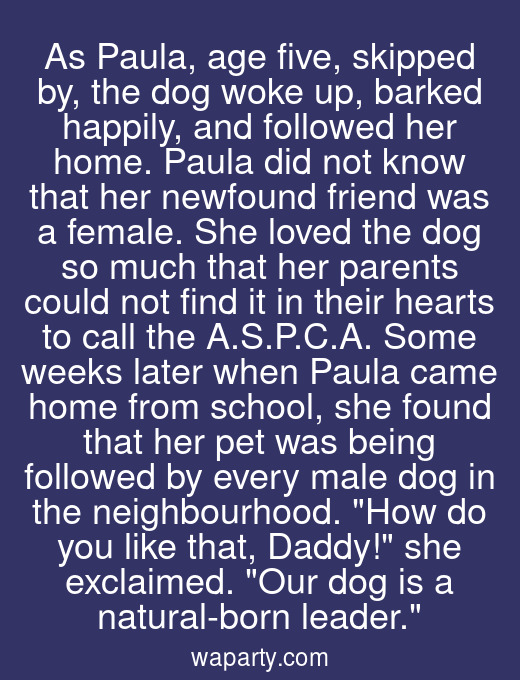 As Paula, age five, skipped by, the dog woke up, barked happily, and followed her home. Paula did not know that her newfound friend was a female. She loved the dog so much that her parents could not find it in their hearts to call the A.S.P.C.A. Some weeks later when Paula came home from school, she found that her pet was being followed by every male dog in the neighbourhood. How do you like that, Daddy! she exclaimed. Our dog is a natural-born leader.