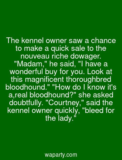 The kennel owner saw a chance to make a quick sale to the nouveau riche dowager. Madam, he said, I have a wonderful buy for you. Look at this magnificent thoroughbred bloodhound. How do I know its a,real bloodhound? she asked doubtfully. Courtney, said the kennel owner quickly, bleed for the lady.
