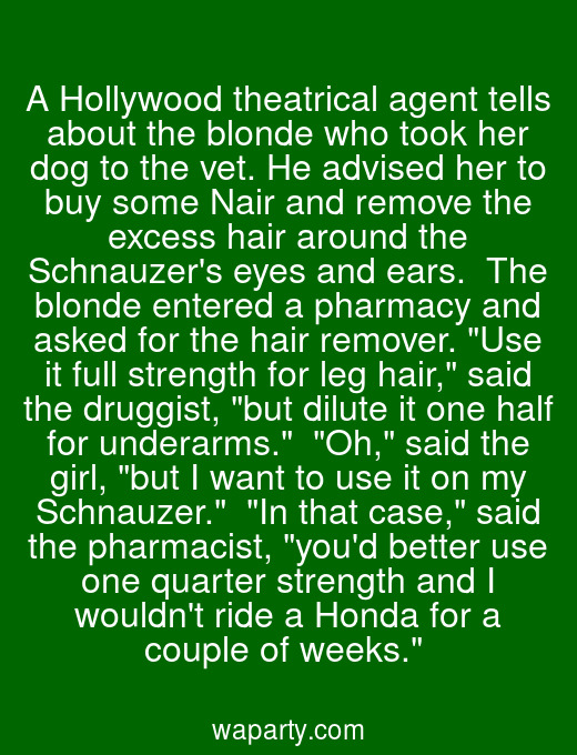 A Hollywood theatrical agent tells about the blonde who took her dog to the vet. He advised her to buy some Nair and remove the excess hair around the Schnauzers eyes and ears.  The blonde entered a pharmacy and asked for the hair remover. Use it full strength for leg hair, said the druggist, but dilute it one half for underarms.  Oh, said the girl, but I want to use it on my Schnauzer.  In that case, said the pharmacist, youd better use one quarter strength and I wouldnt ride a Honda for a couple of weeks.