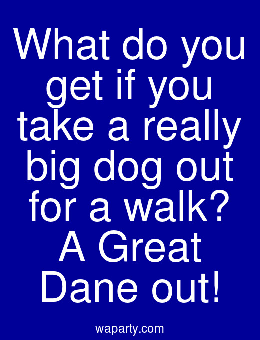 What do you get if you take a really big dog out for a walk? A Great Dane out!