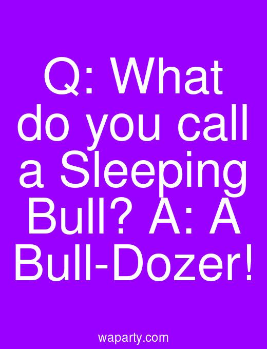 Q: What do you call a Sleeping Bull? A: A Bull-Dozer!