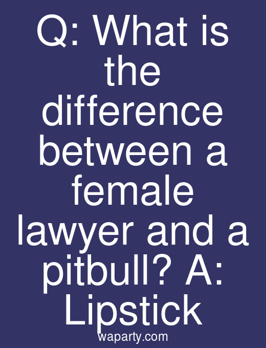 Q: What is the difference between a female lawyer and a pitbull? A: Lipstick