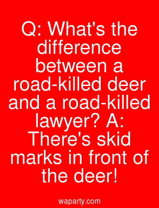 Q: Whats the difference between a road-killed deer and a road-killed lawyer? A: Theres skid marks in front of the deer!